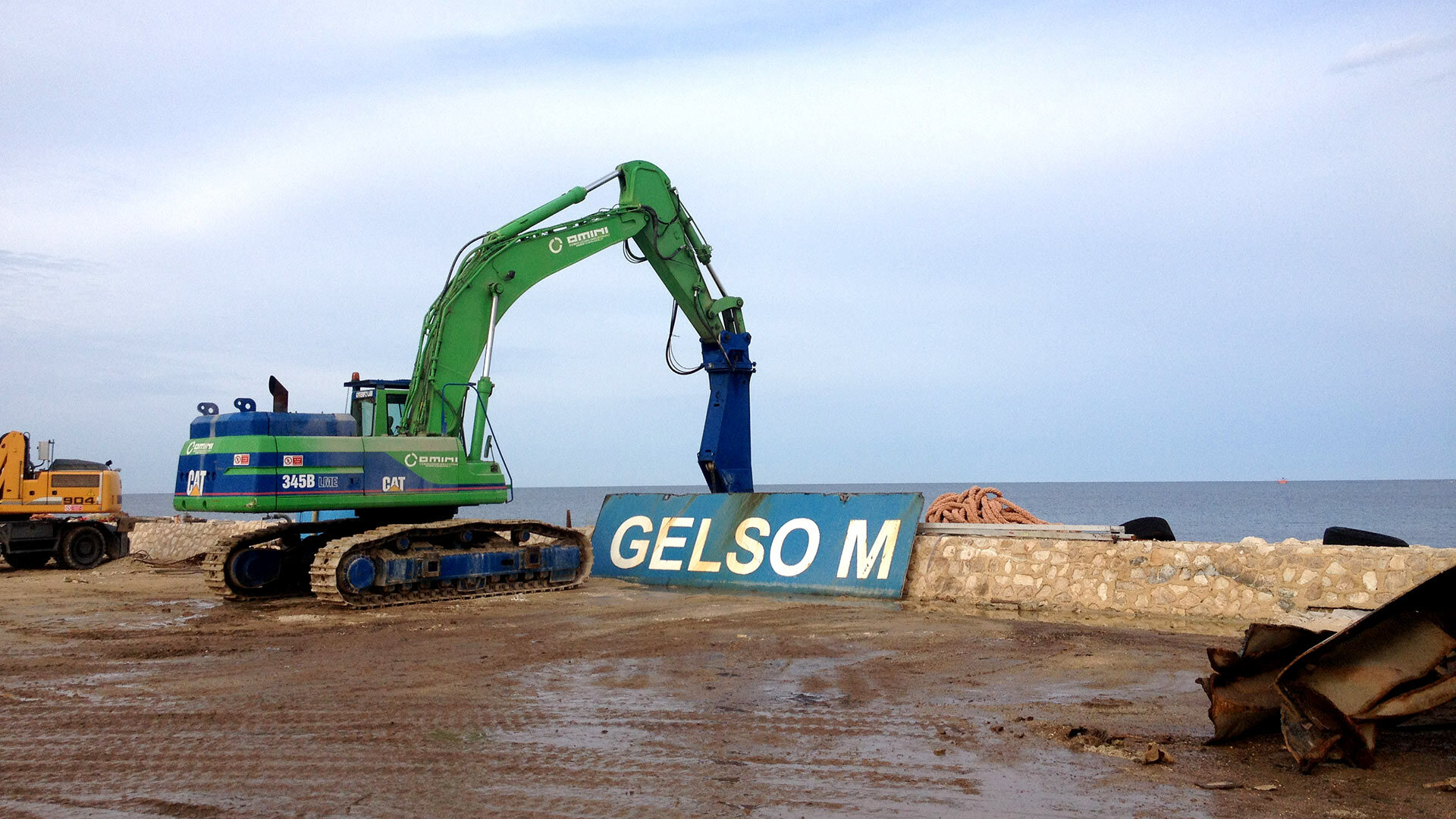 gelso 01